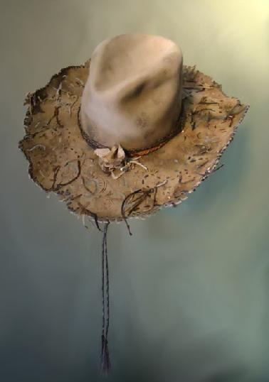 100 x beaver hand made hat with stampede string of horse hair
